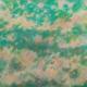 Sans titre (Nuages blancs sur fond turquoise), 1980. Huile sur toile, 113 x 140 cm